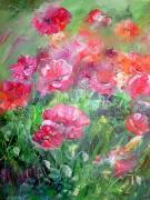 tableau fleurs : les coquelicots