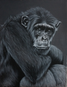tableau animaux atiste animalier singe art animalier de poret : Singe Songeur