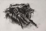 dessin animaux de poret dessin animalier artiste animalier singe : Portrait de Chimpanzé n° 5