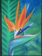 tableau fleurs fleur exotique oiseau de paradis strelizia : 1er Strélitzia