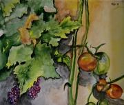 autres fruits tomates raisins vignes : tomates et raisins