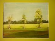 tableau paysages campagne arbres : Paysage du Lauragais