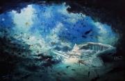 tableau marine mer ocean epave plongee alexis le borgne sous l eau : Monde sous marin