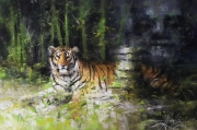tableau animaux tigre du bengale jungle nature alexis le borgne voyage asie : Serein