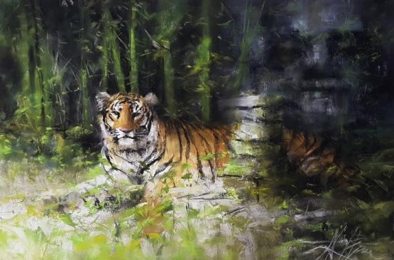 TABLEAU PEINTURE Tigre du bengale jungle nature Alexis Le Borgne Voyage Asie Animaux Pastel  - Serein