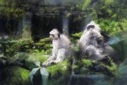 tableau animaux singes asie jungle ruines alexis le borgne voyage asie : En famille