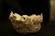 ceramique verre autres porcelaine : biscuit 3