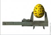 art numerique nature morte œufs vernier mesure metal : ŒUFS DE PANTHÈRE ,