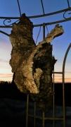 sculpture fleurs sculpture art deco photo poster : naissance