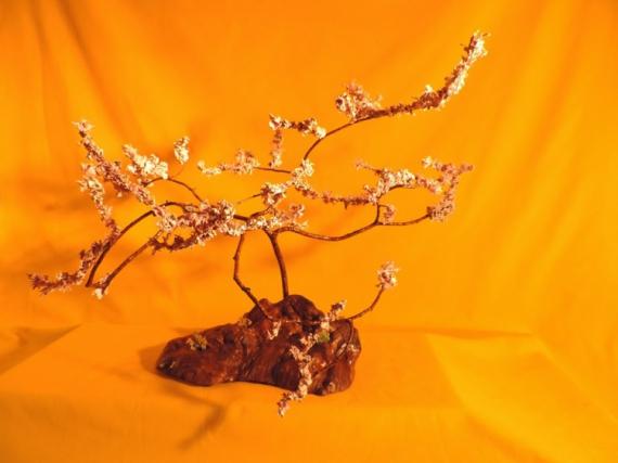 DéCO, DESIGN CERISIER DU JAPON CREATION ARTISANALE LICHEN DECORATION BOIS Fleurs  - CERISIER ETERNEL