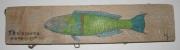 deco design marine poisson sur bois flo bois flottes deco nature bord de mer : girelle paon mâle