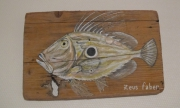 tableau animaux poisson saintpierre deco poissons decoration poissons cadeau : Saint-Pierre Tableau de poisson sur bois flotté