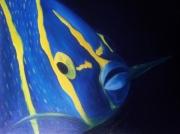 tableau animaux poisson ange : POISSON ANGE