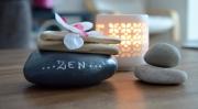 deco design autres galet orchidee pierre zen : galet de décoration ZEN