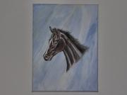 tableau animaux cheval tete animaux nature : Tete de cheval sur marbre.