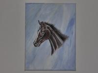 Tete de cheval sur marbre.
