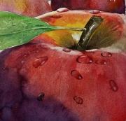 "tableau fruits pomme fruit nature : ""pomme"""