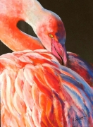 "tableau animaux flamand oiseau camargue animal : "" flamant rose"""