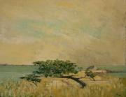 """tableau paysages mer arbre vent soleil : """" Vent dominant """""""