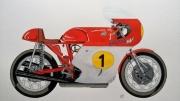 dessin sport : 500 MV Agusta
