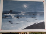 tableau marine clair de lune mer dauphins oiseaux : Clair de lune