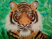 tableau animaux tigre noir marron blanc : fauve