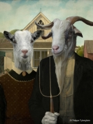 photo animaux portrait animalier portrait bouc chevre : AMERICAN GOAT IC