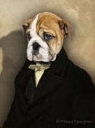 photo portrait animalier habit costume chien : Tristan