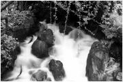 photo paysages jjdn photo nice la riviere en coton : La rivière en coton