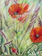 tableau fleurs champetre coquelicots fleur couteau : COQUELICOTS