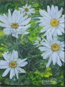 tableau fleurs fleurs marguerites : Un peu, beaucoup, à la folie...