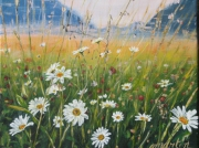 tableau fleurs marguerites fleurs champs paysage : champs de fleurs