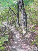 tableau paysages sous bois foret sentier arbres : villefort sous bois