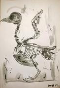 dessin animaux aquarelle oiseau illustration bird : Squeleton Bird