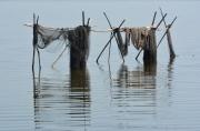 photo marine filets de peche parc regional de la : Filets abandonnés