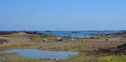 photo marine cotesdarmor maree basse bateaux : Marée basse à la Pointe de l'Arcouest