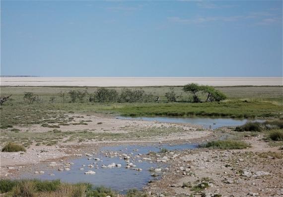 PHOTO lac asséché Namibie Parc National d'Etos Paysages  - Point d'eau et salar d'Etosha
