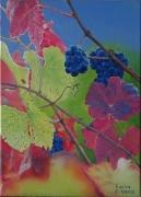 tableau fruits cepage noir automne couleurs : Cépage noir aux couleurs automnales