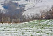 photo paysages ardeche neige espaces agricoles : Espaces agricoles