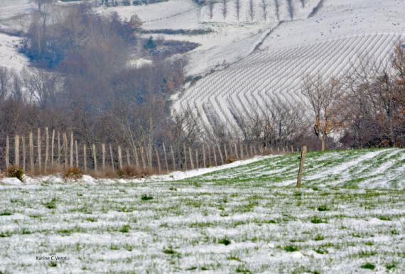 PHOTO Ardèche neige espaces agricoles Paysages  - Espaces agricoles