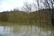 photo paysages plaine alluviale rhone : Plaine alluviale du Rhône