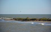 photo marine catalogne mediterranee : Delta de l'Èbre