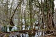 photo paysages croatie istrie : Lacs de Plitvice