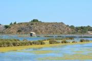 photo marine parc regional de la aude : Etang du Doul