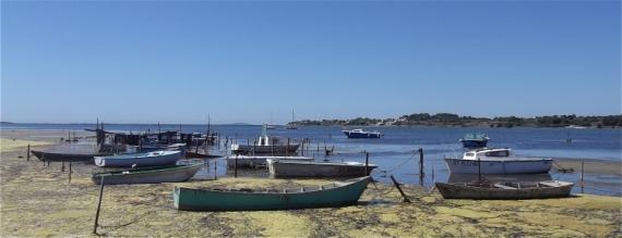 PHOTO Etang de Thau Balaruc-le-Vieux Occitanie Marine  - Etang de Thau à Balaruc-le-Vieux