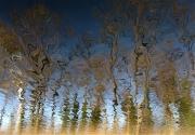 photo paysages lac des pierrelles aedeche : Réflection