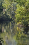 photo paysages lone rhone ardeche : Lône du Rhône