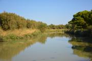 photo paysages canal de la robine aude : Canal de la Robine