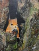 tableau animaux animal nature ecureuil printemps : Printemps en approche