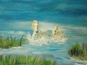 tableau animaux chevaux mer camargue charente maritime : chevaux des marais